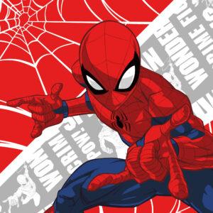 Ręcznik_Spider-Man 030